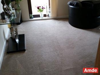 livingroom carpet cleaning