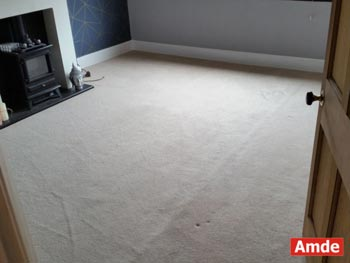 living room carpet cleaning best result in Bathgate