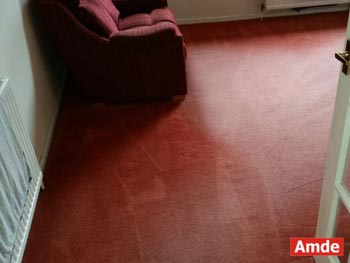 living room carpet cleaning Bo'ness
