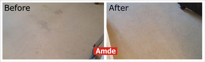 arpet cleaning in Bonnyrigg flat