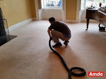 living room carpet cleaning best result in Dalkeith