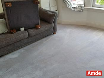 large dark grey carpet cleaning services