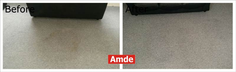 carpet cleaning in Haddington flat