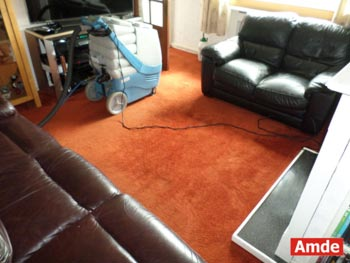 small living room with orange carpet cleaning in Loanhead