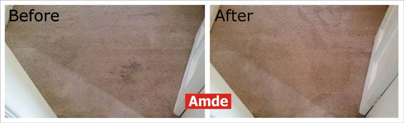 carpet cleaning in Queensferry