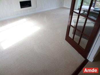 standard size carpet cleaning South Queensferry