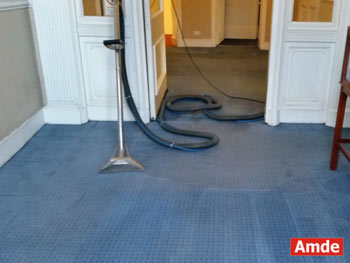 blue office carpet cleaning edinburgh