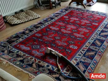 red rug cleaning services flat - Edinburgh