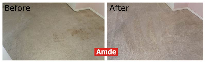 light dining room carpet cleaning