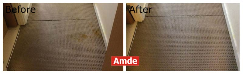 in bedroom carpet cleaning services - stain and smell removed